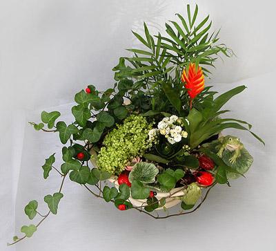 Несколько цветов в одном горшке